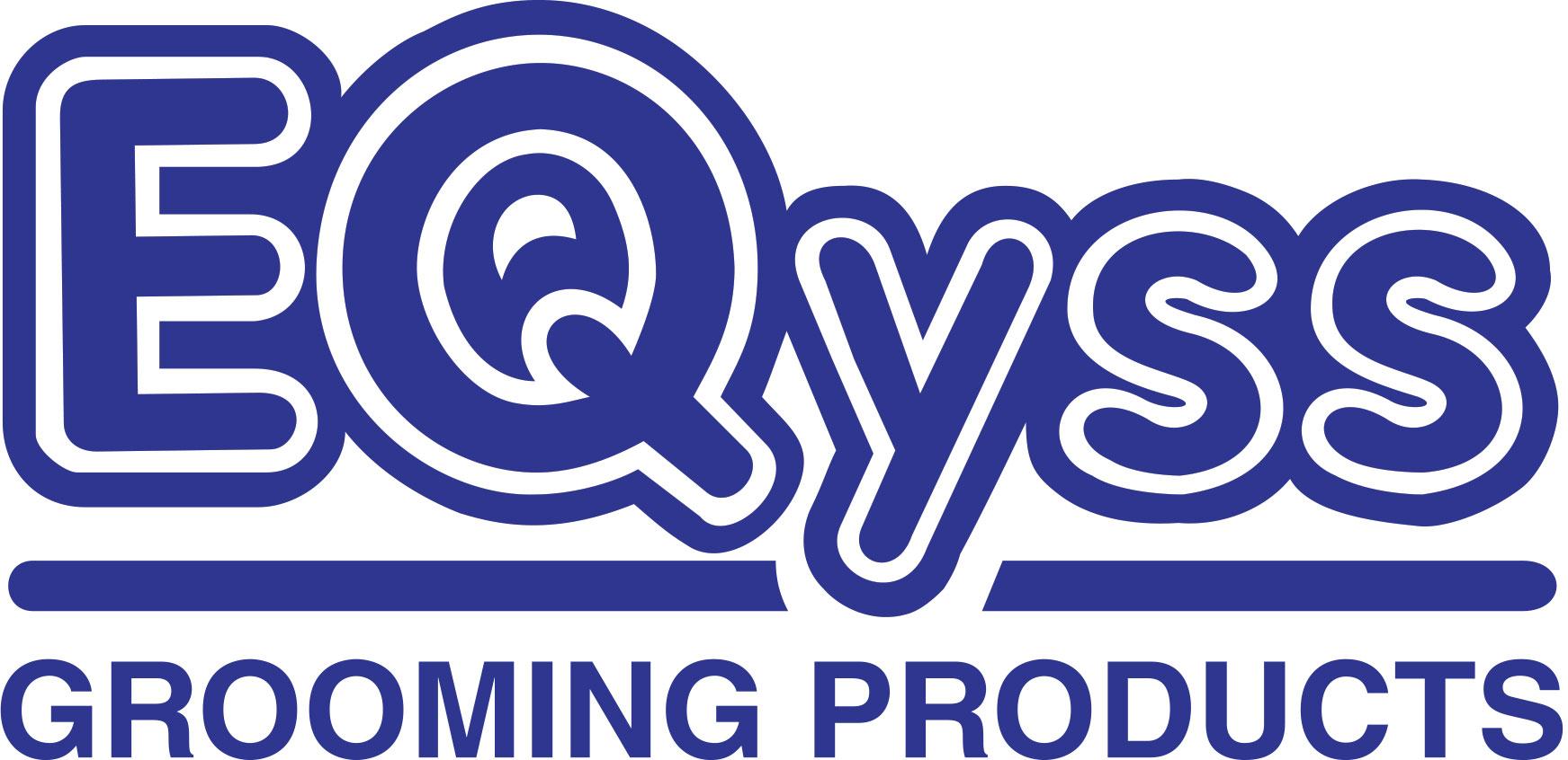 EQyss Logo